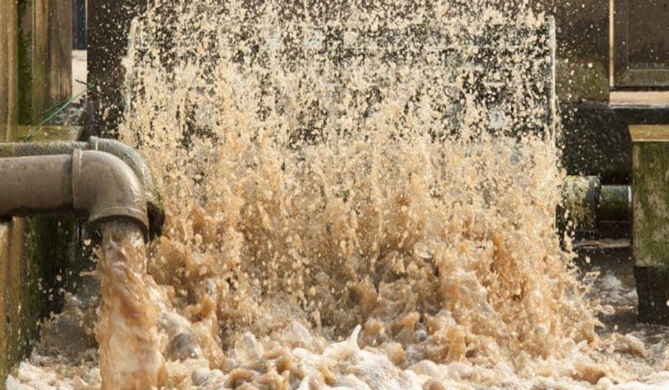 Solution décentralisée de traitement des eaux usées : Cas du village Abbad Chérif